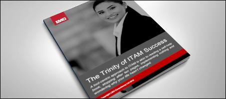 The Trinity of ITAM Success